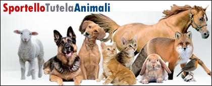 Servizio Tutela degli Animali