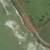Attivato il Bau Beach per cani sulla spiaggia di Palo Laziale