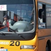 Bus gratuiti dalla stazione a torre Flavia