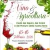 """Grande partecipazione per l'evento """"Vino ed Agricoltura"""""""