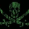 """I sistemi informatici del Comune di Ladispoli  sono al sicuro dal virus """"WannaCry"""""""