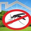 Zanzare, proseguono gli interventi di disinfestazione