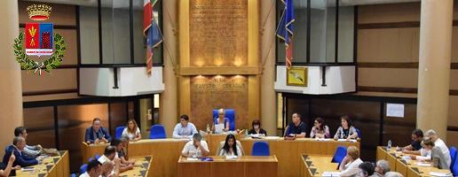 Sedute Consiglio Comunale e Commissioni