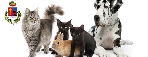"""""""Per la disinfestazione si utilizzino prodotti non nocivi per gli altri animali"""""""